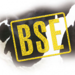 BSE - штемпельная краска для маркировки мяса